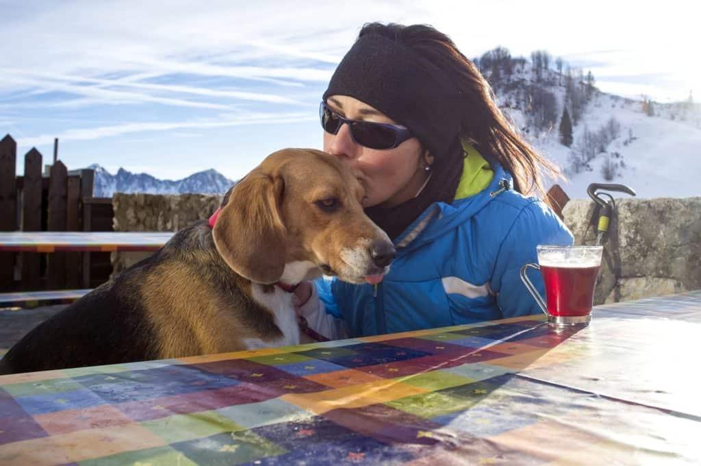 urlaubsbetreuung-für-hund