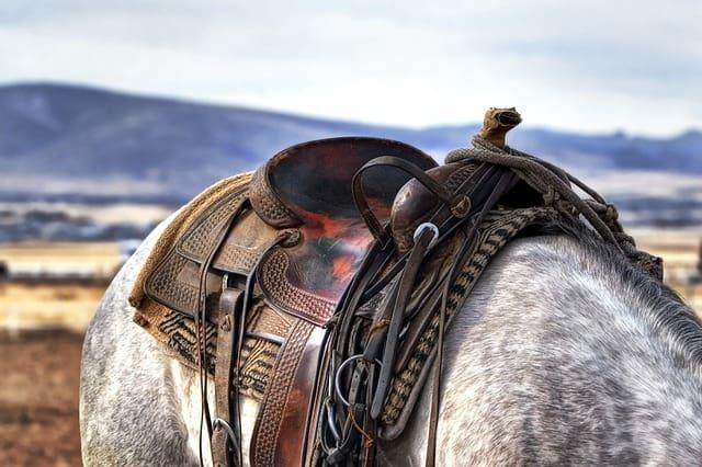 pferdeausstattung