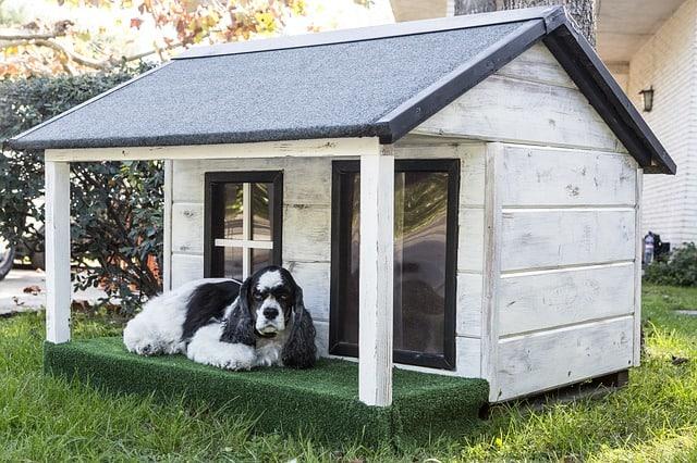 Hundehöhle im Garten