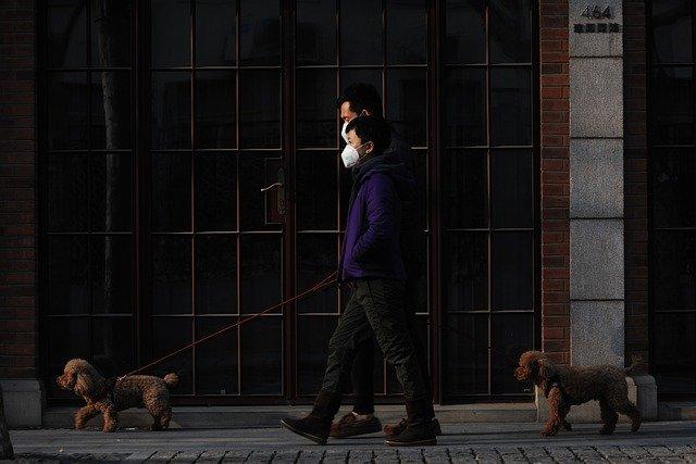 Corona Gassi gehen mit Hund